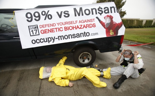 Occupy Monsanto- UK Campaigners set to Target Genetically Modified